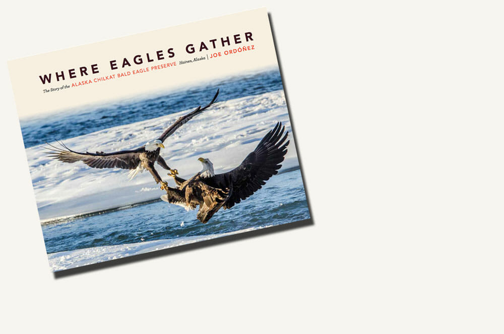 "Check out Joe's new book, ""Where Eagles Gather"""